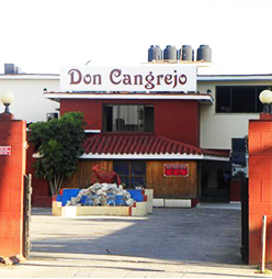 Don Cangrejo